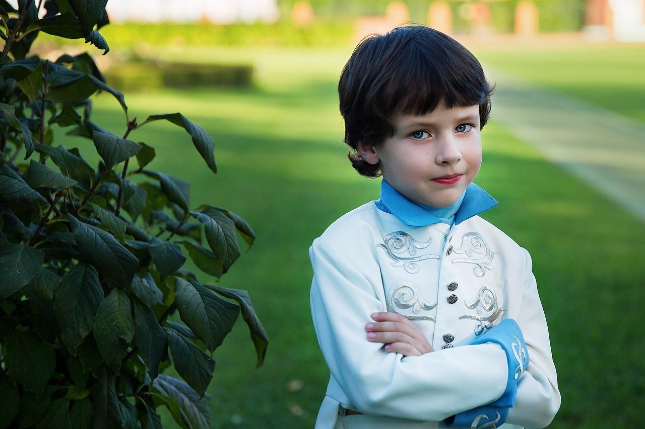 prince-2974392_1280